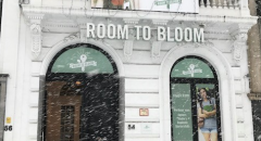Room to Bloom in winterdecor